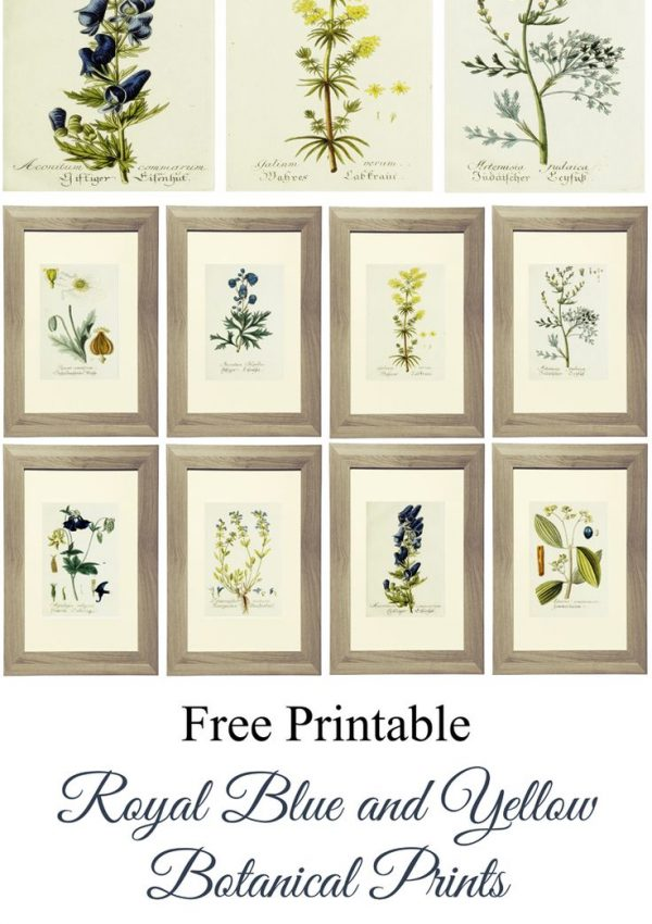 Free Printable Alert!  Botanical Gallery Wall Art